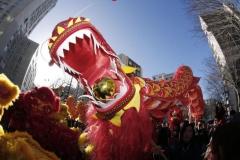 714773-un-dragon-geant-pour-le-defile-du-nouvel-an-chinois-le-2-fevrier-2014-dans-le-quartier-de-belleville.jpg